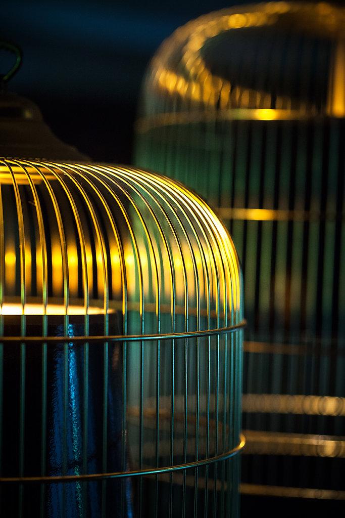 La Mare aux Oiseaux - Saint Joachim